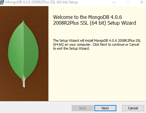 Installing MongoDB On Windows 10 and Getting started with MongoDB